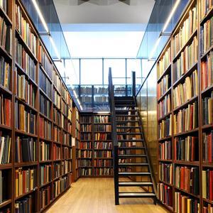 Библиотеки Бессоновки