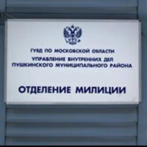 Отделения полиции Бессоновки